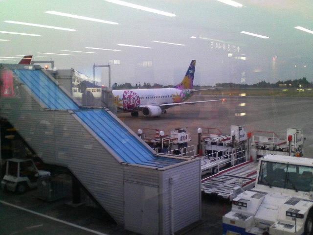 今鹿児島空港です。
