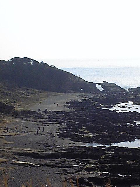 三浦半島城ヶ島